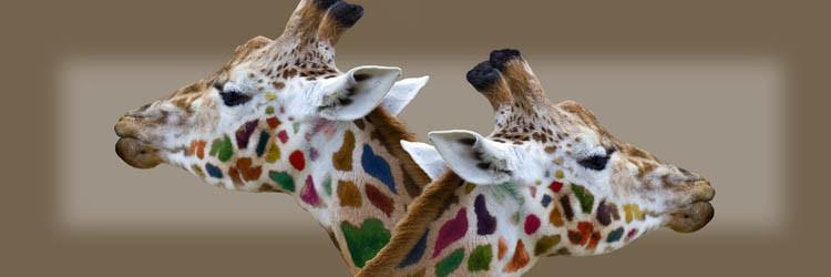 giraf compu art loekie grijspaardt